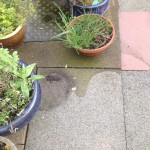 patio cleaning in morecambe